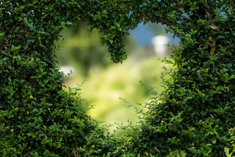 What Does Being Green Mean to Us?